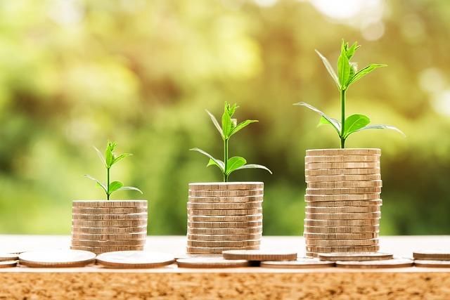 růst a peníze