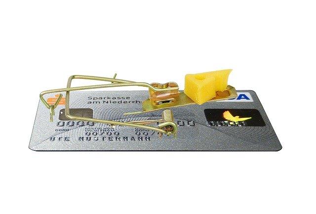 dluhy, past na myši, sýr, kreditka